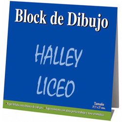 Block Dibujo Georgi/Halley Liceo 10h